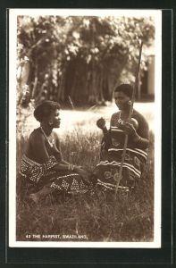 AK Swaziland, The Harpist, afrikanische nackte Frauen