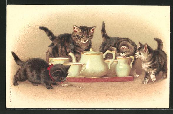 AK neugierige Kätzchen und Kaffeeservice