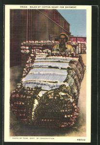 AK Bales of Cotton ready for Shipment, Mann schiebt einen Baumwollballen, afrikanische Volkstypen, Landwirtschaft