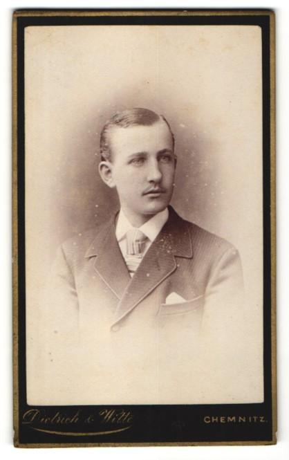 Fotografie Dietrich und Witte, Chemnitz, Junger Mann im Anzug mit Bart und Scheitel