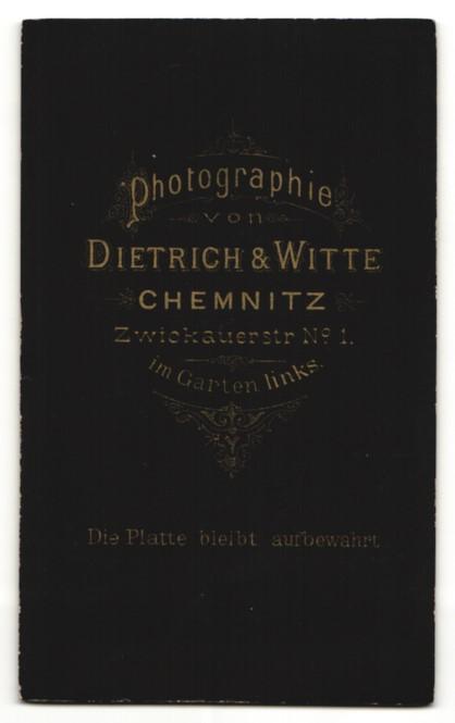 Fotografie Dietrich und Witte, Chemnitz, Junger Mann im Anzug mit Bart und Scheitel 1