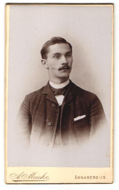Fotografie A. Meiche, Annaberg i/S, Portrait junger Herr in Anzug