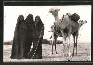 AK Mauritanie, Femmes Maures a la corvee de bois