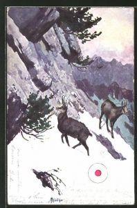 AK Steinböcke im verschneiten Gebirge