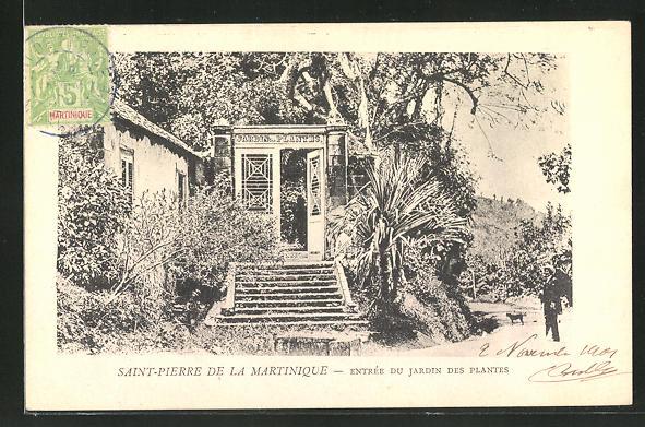 AK Saint-Pierre de la Martinique, Entrée du Jardin des Plantes