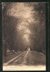 AK St-Laurent, Avenue des Bambous