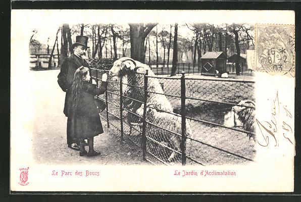 AK Paris, le Jardin d'Acclimation, le Parc des Boucs, Ziegen im Zoo