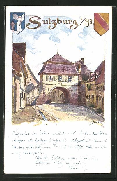 Künstler-AK Carl Biese: Sulzburg i. B., Ortsansicht mit Strassenpartie, Wappen