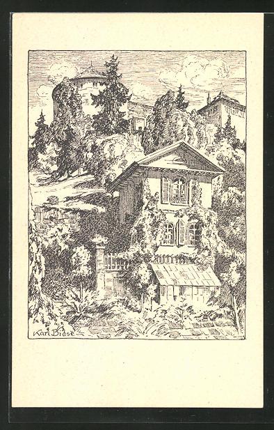 Künstler-AK Carl Biese: Gartenhaus an der Neckarhalde