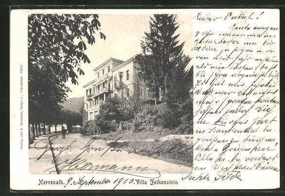 AK Herrenalb, Hotel Villa Falkenstein, Strassenpartie mit Gebäudeansicht