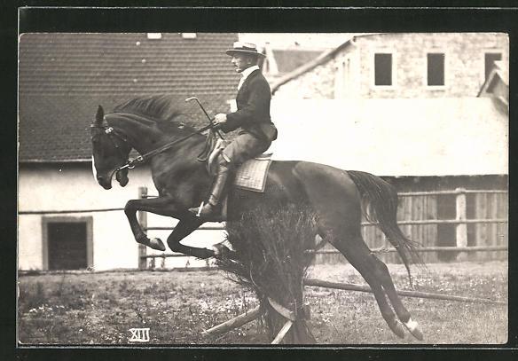AK Reiter auf seinem Pferd springt über eine Hürde, Pferdesport