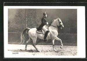 AK Wien, Spanische Reitschule, Reiter mit Gerte auf weissem Pferd im Galopp, Pferdesport