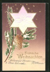 Präge-AK Fröhliche Weihnachten, Tannenzweig und Stern