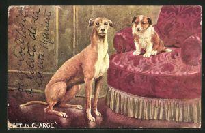 AK Sitzender Hund und kleiner Hund auf einem Sessel