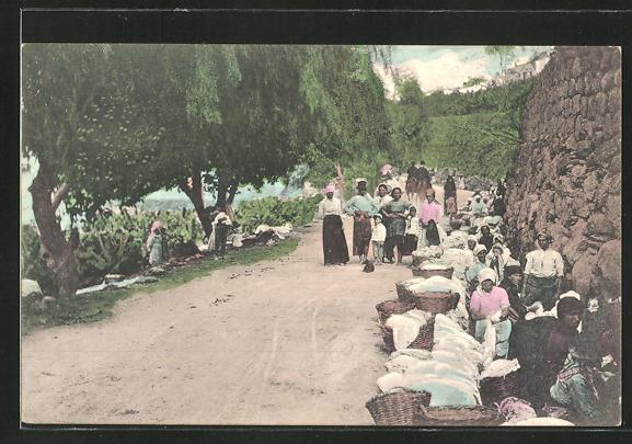 AK Las Palmas, Women washing, Waschfrauen bei der Arbeit