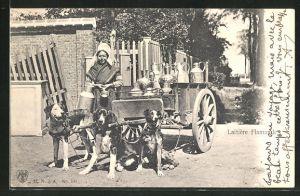 AK Laitière Flamande, Milchkarren mit Hundegespann