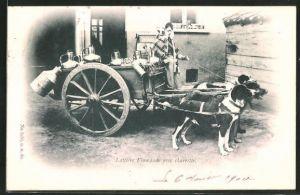 AK Laitière flamande avec charrette, Milchkarren mit Hundegespann