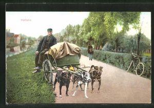 AK Holland, Milchkarren mit Hundegespann