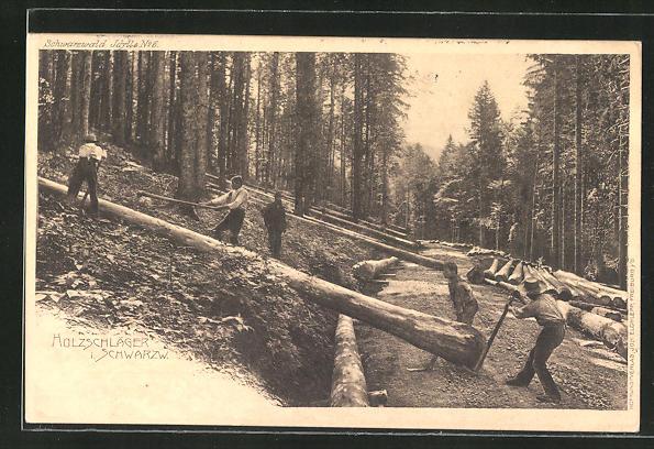 AK Schwarzwald, Holzschläger bei der Arbeit, Forstwirtschaft
