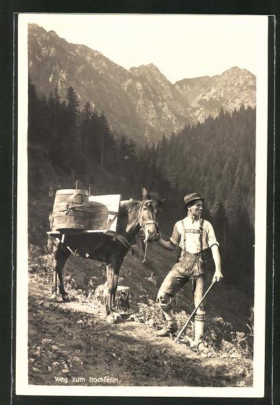 AK Älpler mit Maultier auf dem Weg zum Hochfelln