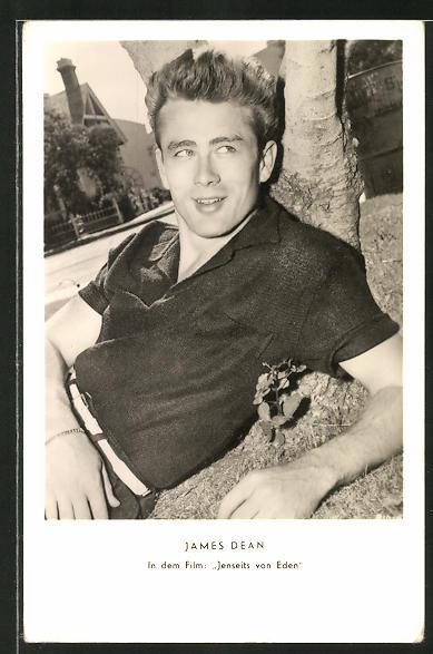 AK Schauspieler James Dean liegend an einem Baumstamm