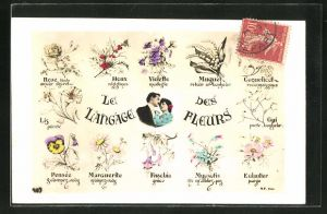 AK Blumensprache, Le Langagei
