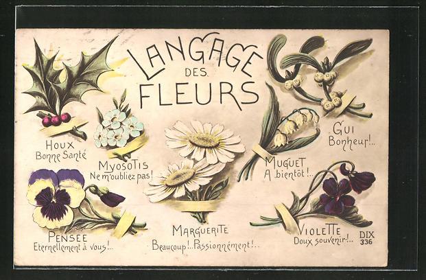 AK Blumensprache, Langage des Fleurs, Marguerite
