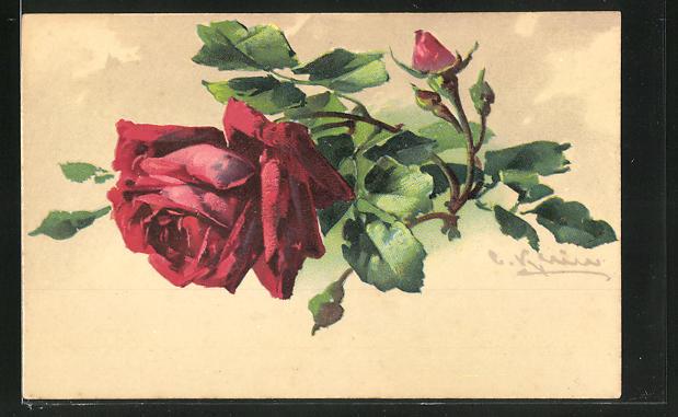 Künstler-AK Catharina Klein: rote Rose mit Knospe
