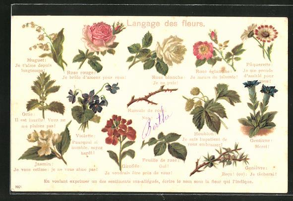 AK Langage des fleurs / Blumensprache, Rote Rose, Maiglöckchen