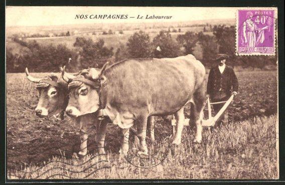 AK Nos Campagnes, Le Laboureur, Pflug vor dem Ochsen-Gespann
