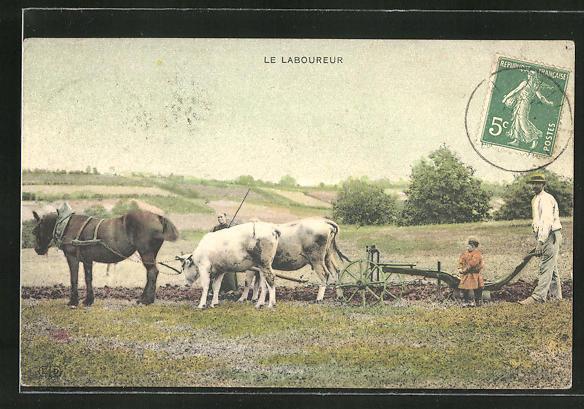 AK Le Laboureur, Gemischtes Pferde- und Ochsen-Gespann vor dem Pflug