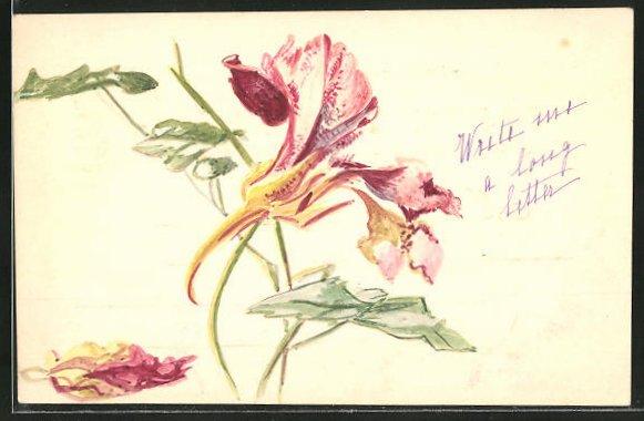 Künstler-AK Handgemalt: Rot-gelbe Blume mit Blattwerk
