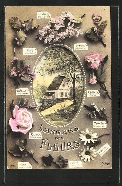 AK Langage des Fleurs / Blumensprache, Rosen, Margeriten