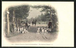 AK Chasse a Courre en Foret de Fontainebleau, en attendant l'attaque, Jagd