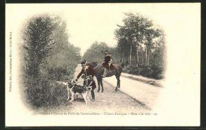 AK Chasse a Courre en Foret de Fontainebleau, Chiens d'attaque, mise a la voie, Jagd mit Hunden