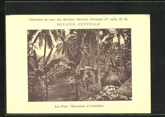 AK Iles Fidji, Bananiers et Cocotiers
