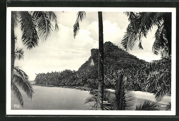 AK Fiji, Insel mit Palmen