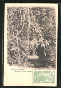 AK La Guadeloupe, Gourbeyre