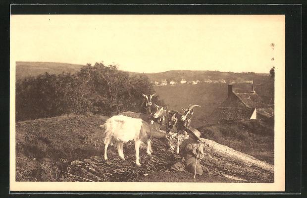 AK Ziegen auf einem Hügel und ein kleiner Junge mit Stock und Hut