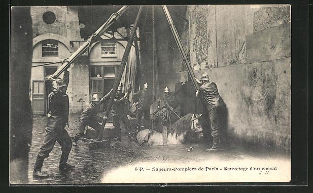 AK Paris, Sapeurs-Pompiers, Sauvetage d'un cheval, Feuerwehr rettet Pferd