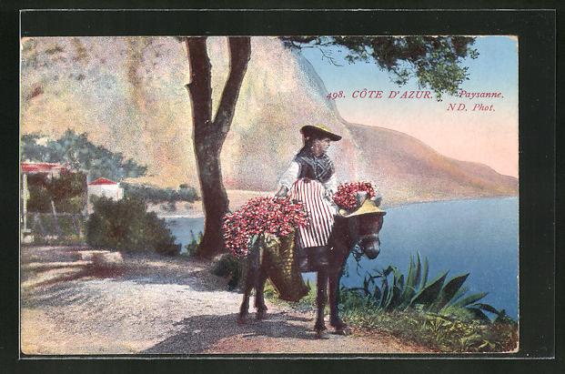 AK Cote d'Aur, Paysanne, Blumenverkäuferin auf dem Maultier