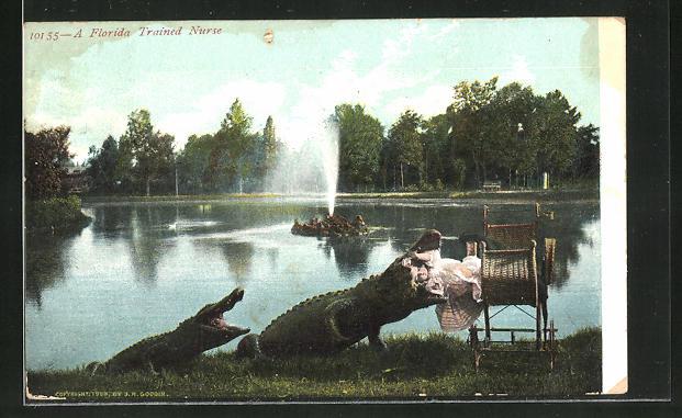 AK A Florida traines Nurse, Krokodil frisst Baby am Ufer