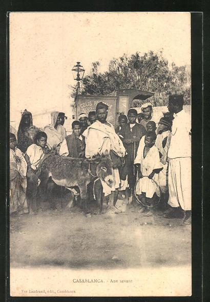 AK Casablanca, Männer und Kinder mit Maultier auf der Strasse