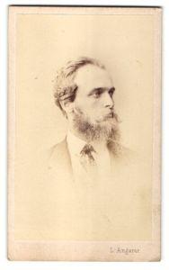 Fotografie L. Angerer, Wien, Portrait Mann mit Vollbart im Anzug mit Krawatte