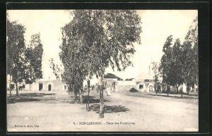 AK Ben-Gardane, Place des Eucalyptus