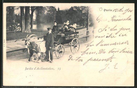 AK Paris, Jardin d'Acclimatation, Kinder mit Ziegengespann im Zoo