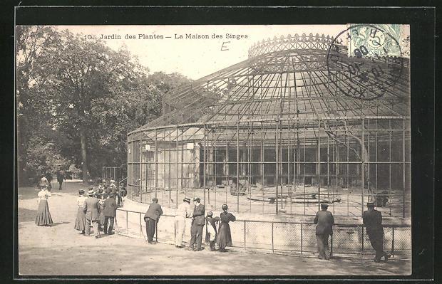 AK Jardin des Plantes, La Maison des Singes, Affengehege im Zoo