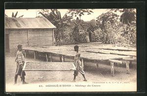 AK Ogooué-N'Kogo, Séchage du Cacao, Kakaobohnen werden unter freiem Himmel getrocknet