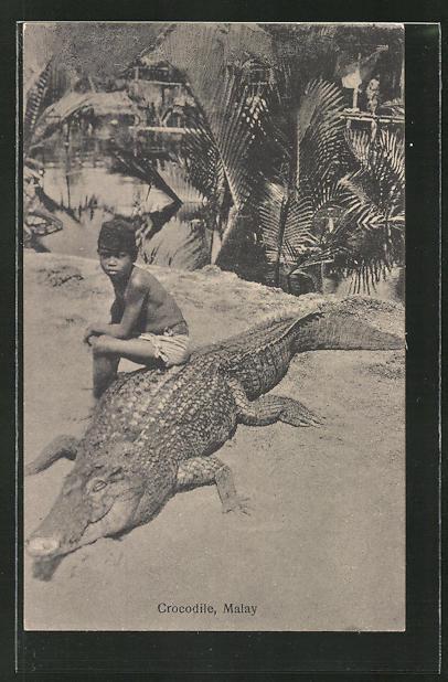 AK Malaysia, Knabe sitzt auf einem Krokodil / Crocodile