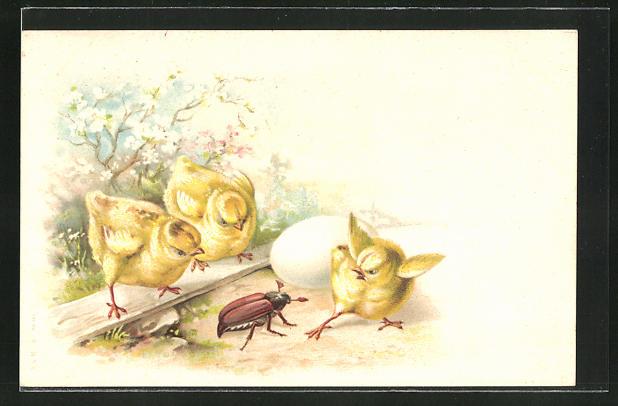 Lithographie Osterküken und Maikäfer